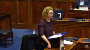 Ad Hoc Committee on the COVID-19 Response Thursday 9 July 2020